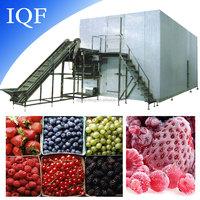 iqf frozen fruit machinery / vegetable quick freezing equipment / individual quick freezer