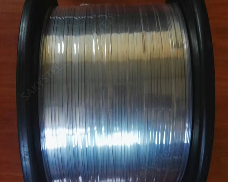 stainless steel ellipse wire