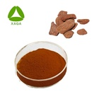 Pine bark mulch powder French maritime pine bark extract Anti-aging OPC Procyanidin 95%