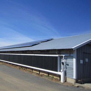 Fast assemble steel structure broiler chicken house/chicken barns shed