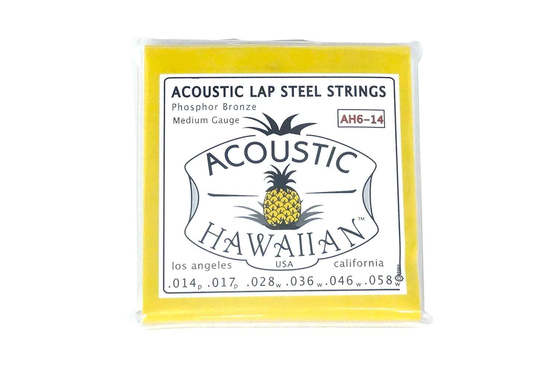 Asher Acoustic Hawaiian Lap Steel Strings, Single Set