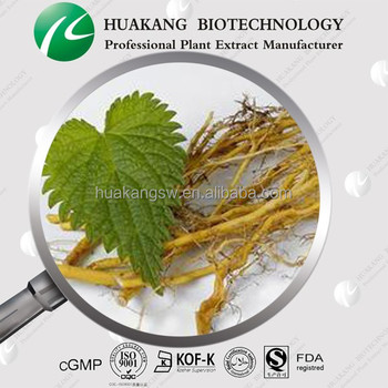 Exporter Nettle Leaf Dried Extract