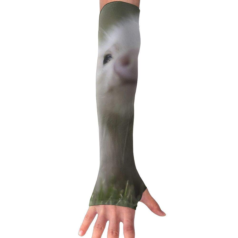 Men & Women Cute Pig Piggy Animal UV Sun Protection Cooling Arm Sleeves,arm Warmer,Long Sleeve Glove,Skin Protector Perfect for Cycling, Driving, Outdoor Sports, Golf, Basketball, Baseball