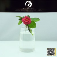 High strength factory supply glass ball vase