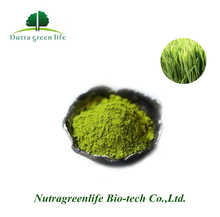 100% Nature Organic Wheat Grass Powder