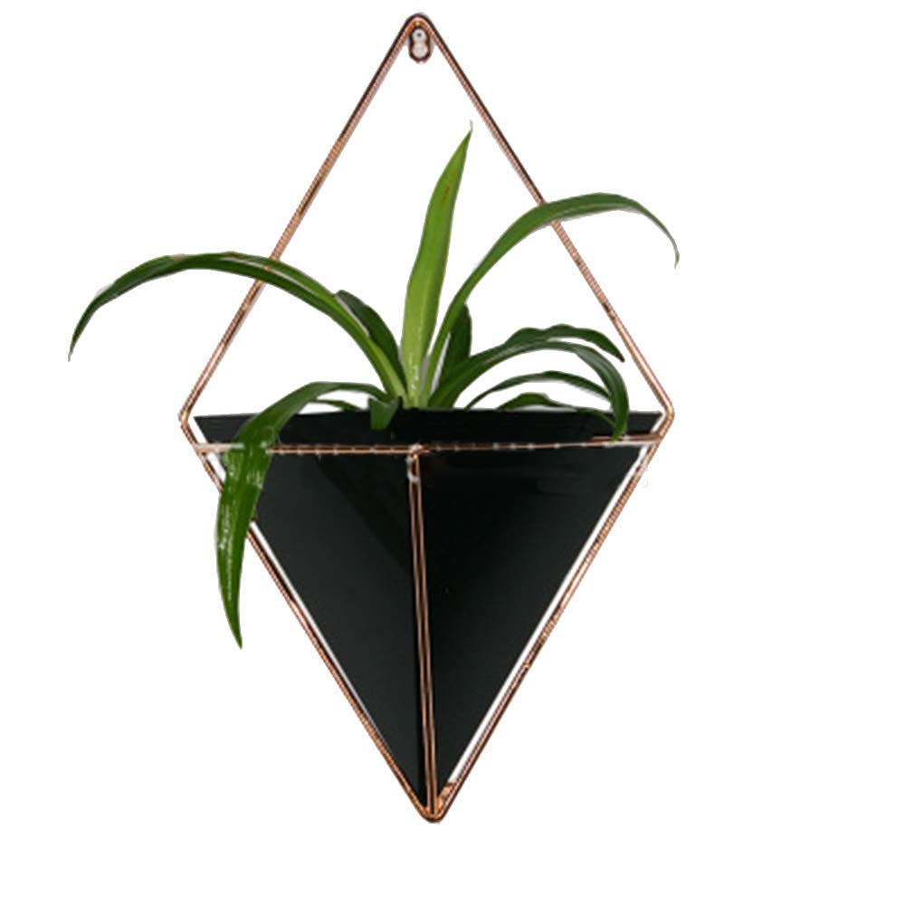 Wall Hanging Planter - 2 Pack Succulent Air Plant Holder with White Rope - Small Decorative Geometric Hanging Planter, Indoor & Outdoor Planter, Garden Flower Pot Planter(Not Included Plants)