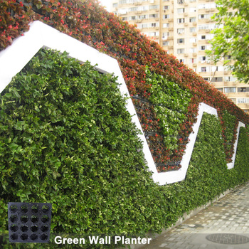 Hot Sale Brand Vertical Garden Planter Green Wall Planter Buy Wall Green Wall Green Wall Planter Product On Alibaba Com