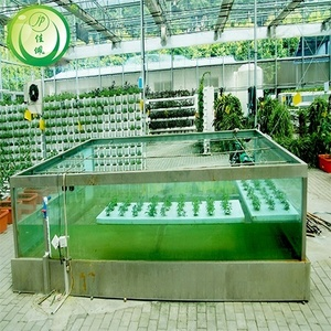 low cost commercial greenhouse agricultural aquaponics growing systems