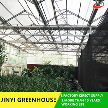 commercial large glass greenhouse , venlo style flowers grenhouse agriculture