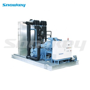 Snowkey Hot Sale Commercial Snow Flake Ice Machine for Artificial
