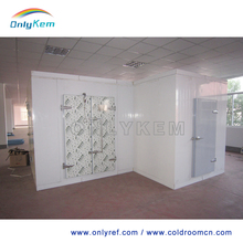 fire rated pu sandwich panel door, cold room modular cold room cold storage room