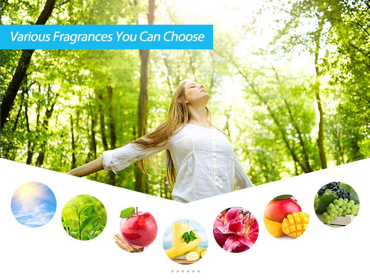 Top 10 Air Freshener Brands Vanilla Air Freshener Spray Diy