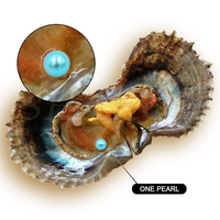 Pearl Party Wholesale Vacuum-packed 6-7mm Teal Saltwater Round Pearl in Oyster