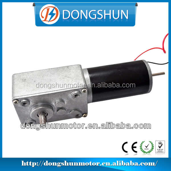 DS-58SW31ZY 58mm 24V electric dc worm gear motor for auto window