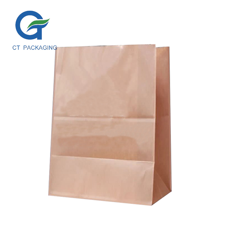 Hot Sell Custom Printing Recycled Brown Shopping Bag Kraft Paper Decorative Lunch Bags