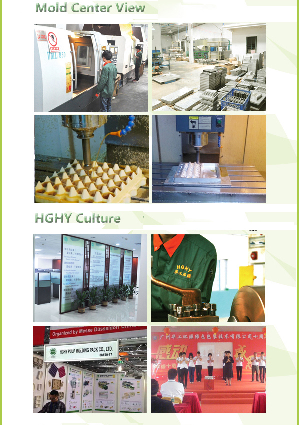 Paper pulp thermoforming egg box/egg carton machine