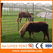 Animal horse shelter for poultry farm