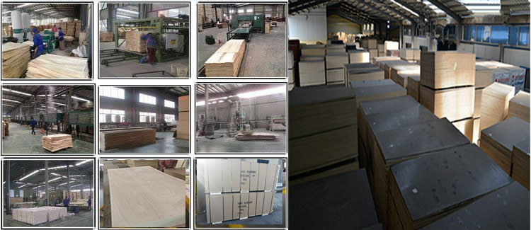 6mm waterproof HDO/MDO film faced plywood with best price