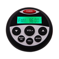 Portable Media Receivers Gauge Audio Stereo Marine Source Unit for hot spa tub