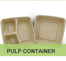 Party Disposable Plastic Storage Round Box Tray With Lid