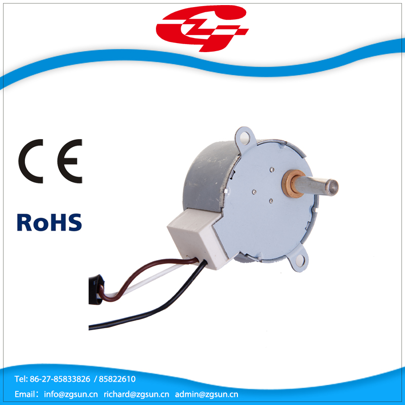 Micro motor for home appliance synchronous motor 42TYJ-F Direction controllable