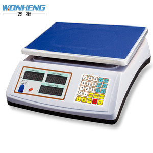 China Manufacture Professional Portable Travel Instrument Of Measuring Weigh Market Scale