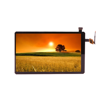 New Arrival 720*1280 7.0 Inch Ips Lcd Screen Tft For Car Lcd