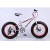 20 inches 21speeds fat tire snow bike 2019 popular Best selling mountain bicycle, carbon steel from Creating