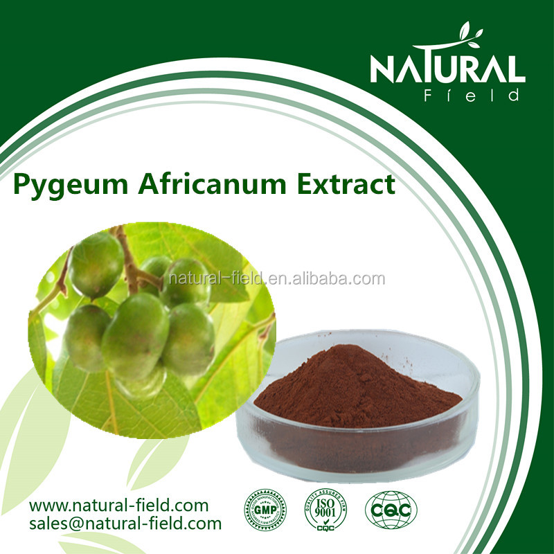Manufacture with CITES of Prunus Africana Bark Extract Powder