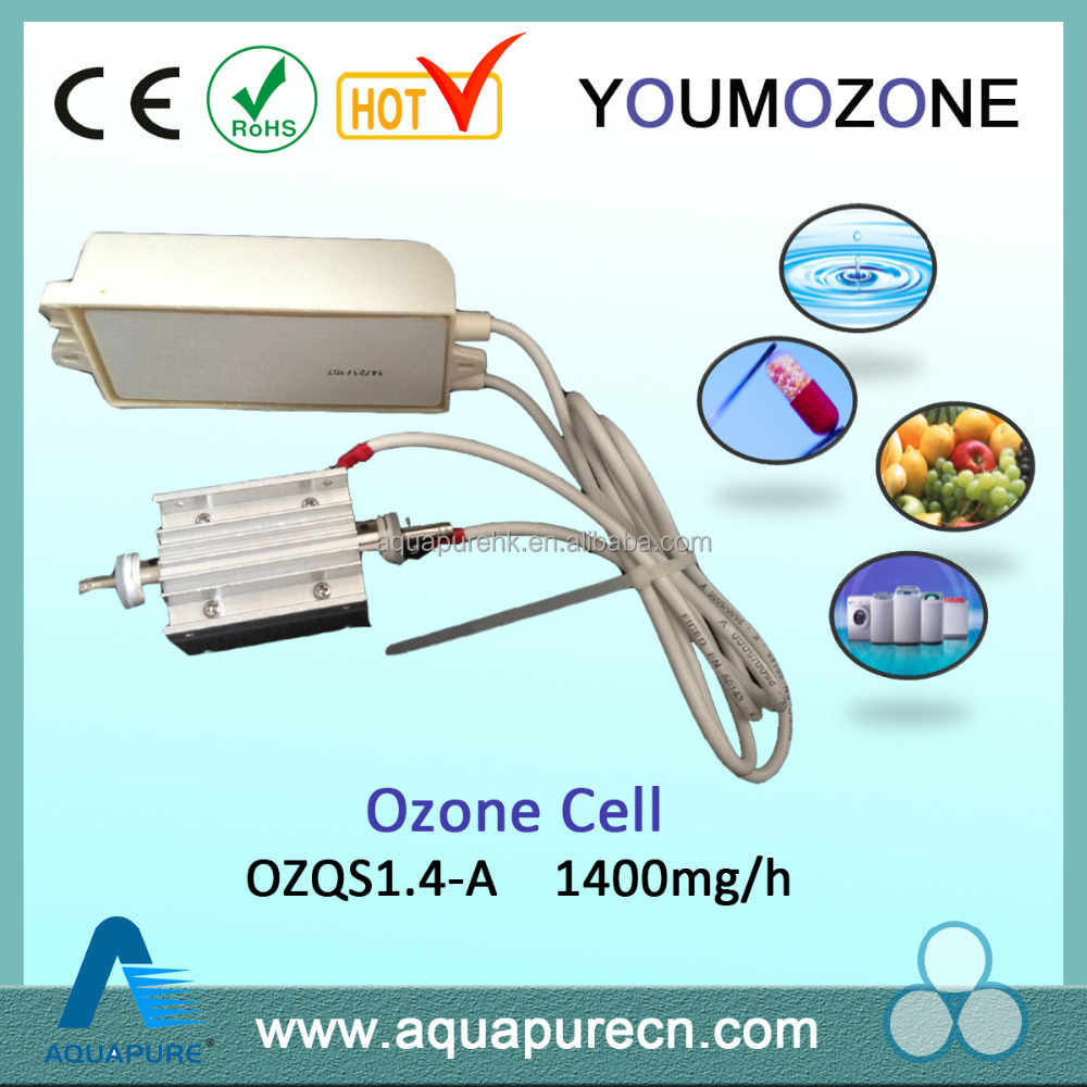 CE passed 1400mg cold corona discharge ozone generator spare parts