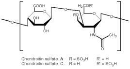 Chondroitin Sulfate/msm/glucosamine Chondroitin
