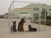 steel mesh wire galvanized outdoor large dog cage