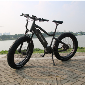 Raptor bafang mid drive ebike and e-bicycle 1000w made from china