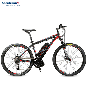 PAS Cross 27.5 inch Bafang Brushless Motor Mid Drive Mountain E Bike MTB Annad Fixie Style