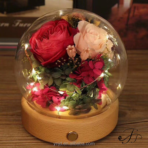 Mother's Day Gift Ideas Glass Cover LED Light Eternal Preserved Roses