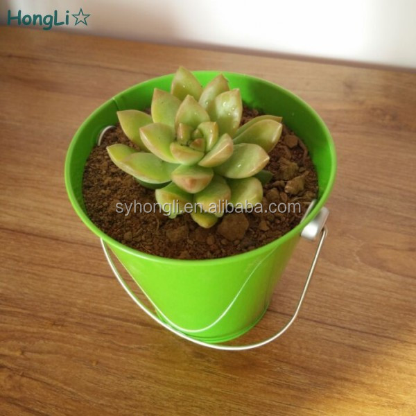 French Style Metal Tin Planter For Succulent Plants