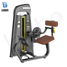Lanbo back extension <span class=keywords><strong>fitness</strong></span> ausrüstung übung ausrüstung gym maschine