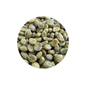 Green Arabica Coffee Beans raw and roasted