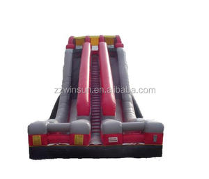 Inflatable slide for adults, Edge 34' Alternate Colors Dual Lane Dry Slides, commercial inflatable slide for sale