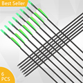 12 Pcs Epoxy Glass Fiber Carbon Arrow Anti Hit Nail 30 Archery Arrows Spine Plastic Feathers