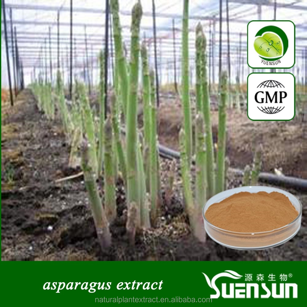 Organic asparagus extract powder