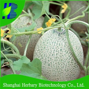2018 Hot sale rock melon seeds for cultivating