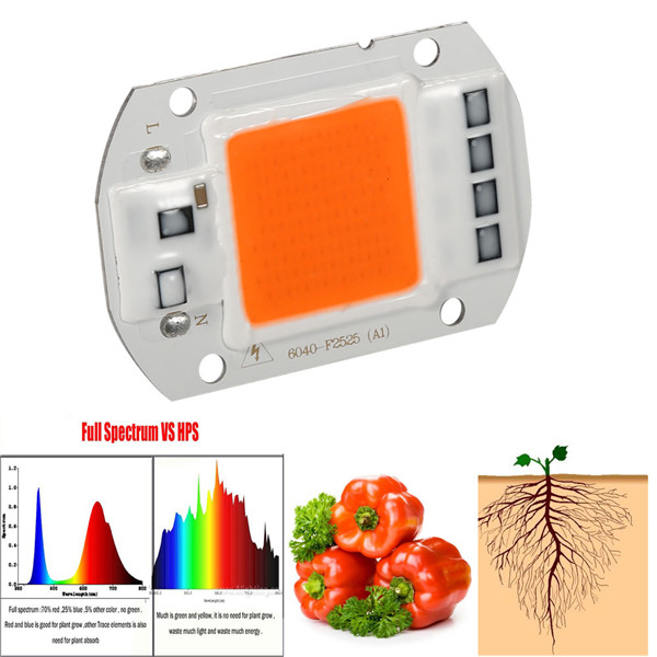 1Pc 50W Full Spectrum Warm/White Led COB Chip Grow Light Growth Lamp Garden Hydroponic Plant