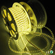 220v 110V waterproof IP65 5050 led strip led light hose 2400k 4000k 6000k modi led light