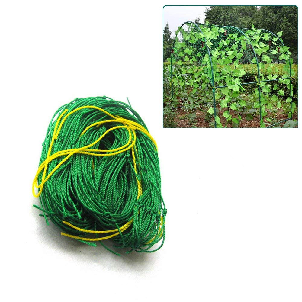 Pannow Nylon Trellis Netting, Reinforced Garden Plant Support Net for Climbing Plants, Vine Vegetables Flowers and Veggie Trellis Net size 3ft x 6ft