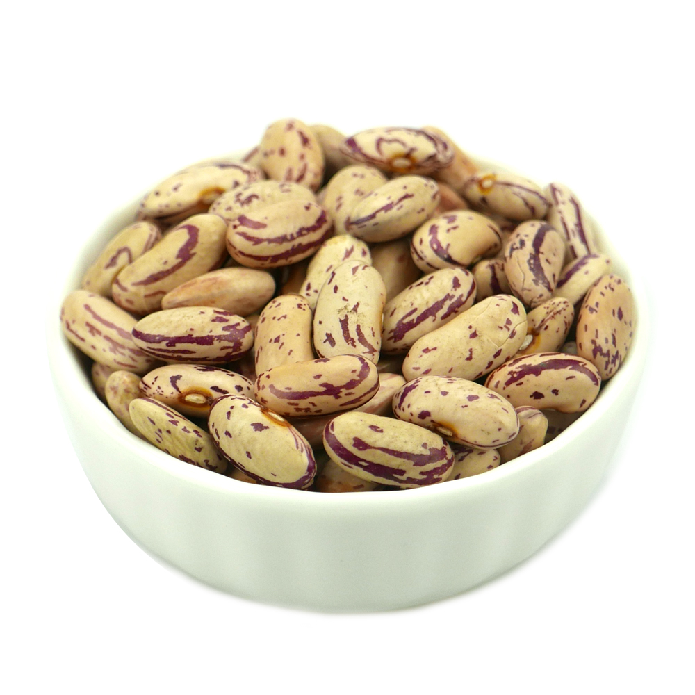 Light speckled kidney bean LSKB Pinto bean butter bean size 200-220pcs new crop on hot sale