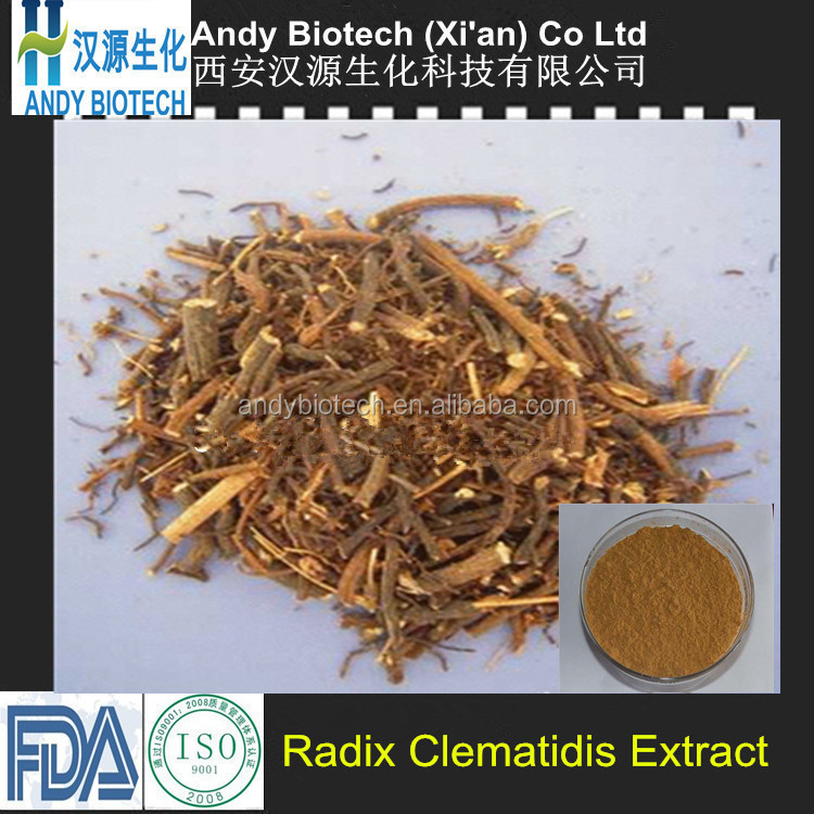 One hundred percent good quality Radix Clematidis Extract