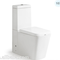 (B-2370A) bathroom sitting washdown two-piece wc toilet