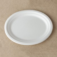 Eco friendly sugarcane bagasse disposable paper pulp tableware for dinner