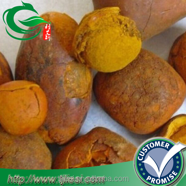 supply ox gallstones cattle gallstones cow gallstones with low price